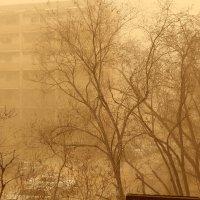 казахстанский дождь :: Андрей Кирюхин