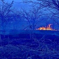 Когда с природою огнем играют... :: Александр Резуненко