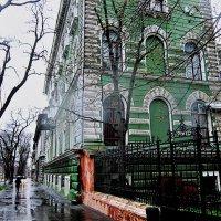 я шла по улице Пастера, дождь монотонно моросил... :: Людмила