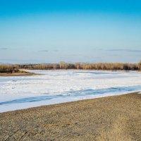 Весна не за горами :: Сергей Щербаков