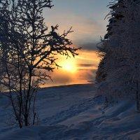 Зимние красоты :: Ольга