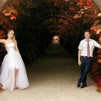 Свадебная прогулка в Кусково :: Сергей Гаварос