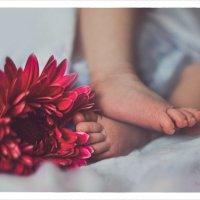..о ножках :: Евгения Шаталова