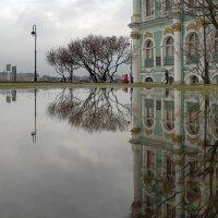 Весенний разлив в Разводном саду :: Valeriy Piterskiy