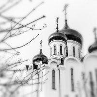 Собор :: Ирина Корнеева
