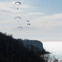 В небе над Балтикой :: Александр Степовой