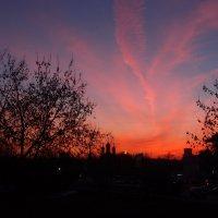 Закат над Москвой :: Ольга Говорко