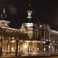под покровом ночи :: Андрей Новосёлов