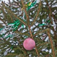Новый год в Вязьме :: Алексей Шаповалов Стерх