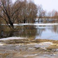 Стекает март речистыми ручьями... :: Лесо-Вед (Баранов)
