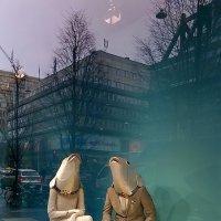 Витрины Стокгольма :: Swetlana V