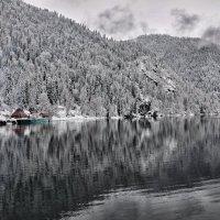 Рицца :: Юля Мельникова