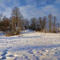Зима (9) :: Николай Е