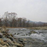 Река Каменка :: Анатолий Кузьмич Корнилов