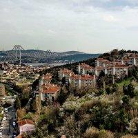 Istanbul 2015 15 :: Arturs Ancans