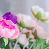 цветы :: Ольга Забелина