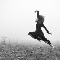 Dancing black swan :: Сергей Радин