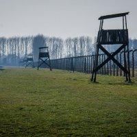 Освенцим :: Александр Антонович