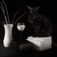 Белая ваза, бокал молока... :: Alexifora ***