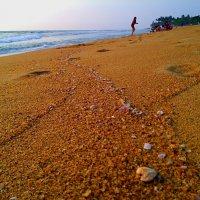 ..изучая основы постройки песочных крепостей :: Ирина Сивовол