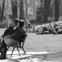 В Булонском парке сироты на лужайке :: Елена Мартынова