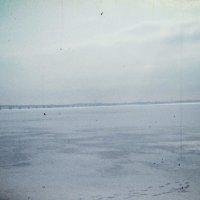 Volga :: Марина Морей