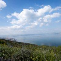 Озеро :: Александр Деревяшкин