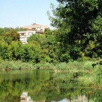 Городской пруд... :: Тамара (st.tamara)