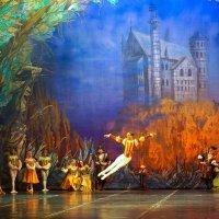 """Сцена из балета """"Лебединое Озеро"""" :: Владимир Максимов"""