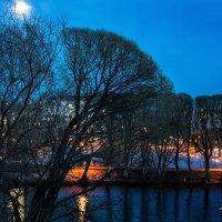 Городской пруд апрельским вечером :: Михаил *******