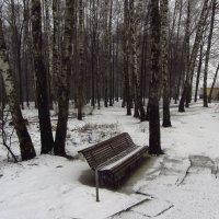 IMG_4101 - Тоже апрель :: Андрей Лукьянов