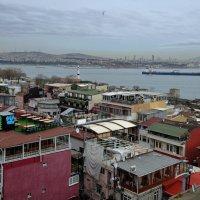Над крышами Босфор :: Дмитрий Близнюченко