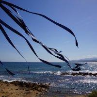 Морской ветер :: Наталия Григорьева