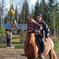 Лошадиная улыбка...)) :: Владимир Хиль