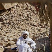 Бедуины :: Павел Катков