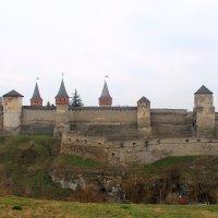 старая крепость :: Евгений Гузов