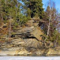 Каменный остров :: Светлана Игнатьева