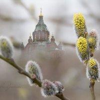 Весна, пробуждение, праздник... :: Bosanat