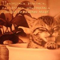 Кто со мной? :: Galina194701