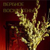 вербное воскресенье :: Tatyana Belova