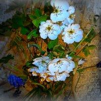 И это облако цветочков белых яблонь  Оберегает нашу хрупкую любовь!!! :: Людмила Богданова (Скачко)
