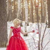 Яблоки на снегу :: Natalia McCarova