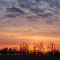 Апрельский закат... :: Tatiana Markova