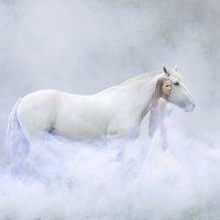 Двое в тумане :: Ольга Чиж