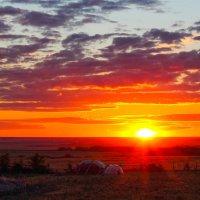 Последние секунды солнца :: Marat M.