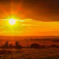 Золотое солнце :: Marat M.