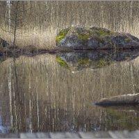 Время оживания камней :: liudmila drake
