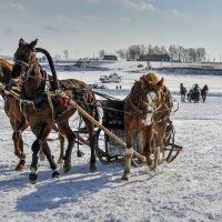 Новоселово - 2015 :: Sergey Yatmasov
