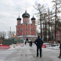 Донской мужской монастырь в Москве :: Ирина я