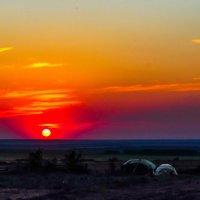 Идеальное солнце :: Marat M.